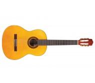 C1 klasikinė gitara