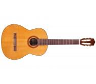 C5 klasikinė gitara