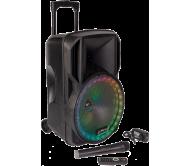 PARTY-15RGB įkraunama garso sistema su RGB LED šviesos efektu ir belaidžiu mikrofonu, USB/BT/TF/FM/AUX, 15′′