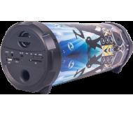 PARTY-TUBER50 nešiojama garso sistema 50W Bluetooth/FM/USB/SD/AUX