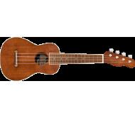 SEASIDE SOPRANO UKULELE PACK soprano ukulelės komplektas