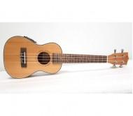 UKE-Q24-EE-SET+CE koncertinės ukulelės komplektas